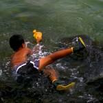 Boy catches yellow tang fish Puuhonua o Honaunau