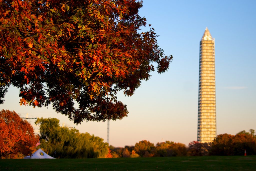 The Ultimate Guide to the National Mall