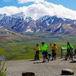 Denali mountain bikers